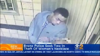 Download Bronx Police Seek Two In Theft Of Woman's Necklace Video