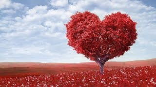 Download Peaceful music, Relaxing music, Instrumental Musc ″Endless Love″ Happy Valentines Day Video
