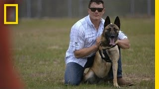 Download Soldier Adopts Dog That Saved His Life | National Geographic Video