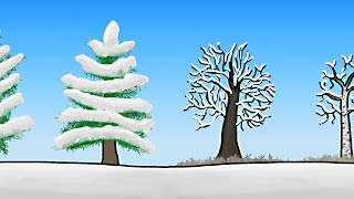 Download How do Trees Survive Winter? Video
