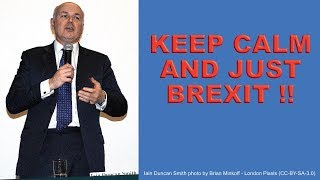 Download Don't Panic - Just Brexit! Video