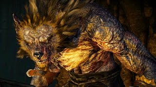 Download Witcher 3: Morkvarg the Werewolf Boss Fight (Hard Mode) (4K 60fps) Video