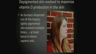 Download The Evolution of Human Skin Pigmentation Video