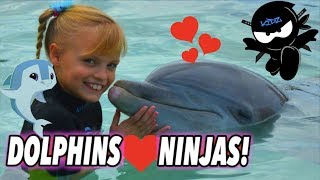 Download We Played and Swam with Dolphins (Bahamas) II Ninja Kidz TV Video