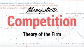 Download Monopolistic Competition Video