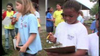 Download You Can Be A Citizen Scientist Video