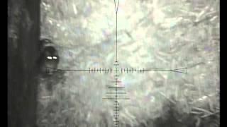 Download NITESITE NS200 RAT SHOOT 3 RAPIDFIRE Video