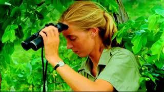 Download TimesTalks | Dr. Jane Goodall and Brett Morgen Video