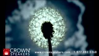 Download Dewitt Jones   Clear Vision Video