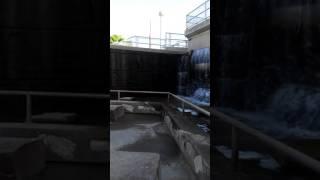 Download Arizona water falls! Video