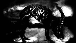 Download AMENRA - Razoreater Video