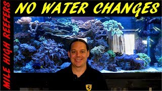 Download Why I don't do water changes on my reef tank Video