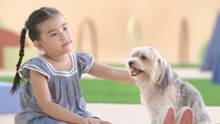 Download Pedigree® | Kids vs. Dog: Who will win? Video