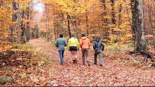 Download Life at Middlebury Video