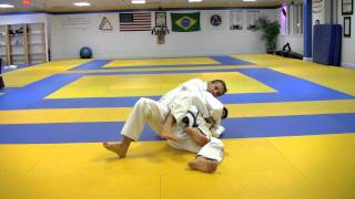 Download Brazilian Jiu-Jitsu: Pedro Sauer BJJ Back Control and Submissions Video