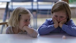 Download The marshmallow test: can children learn self-control? Video