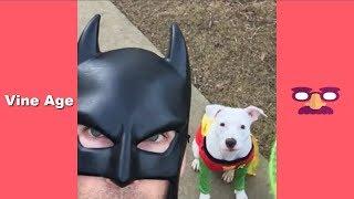 Download Funny BatDad Vines Compilation (w/Titles) All Vine of BatDad - Vine Age✔ Video