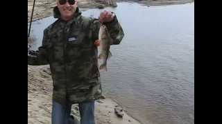 Download Рыбалка в Гомеле на р.Сож. Video