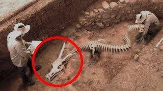 Download MYSTERIOUS Discoveries Science STILL Can't Explain! Video