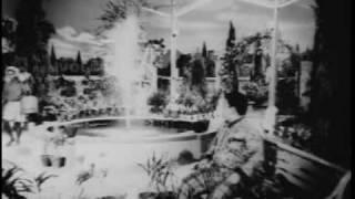 Download ntr mental hospital scene in ntr tikka sankarayya Video
