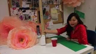 Download DIY Giant Free Standing Tissue Paper Flowers Video