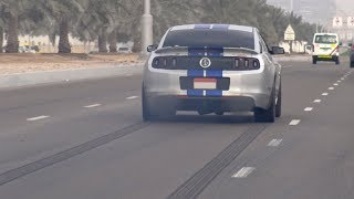 Download 850HP Ford Shelby GT500 SVT from HELL!! Video