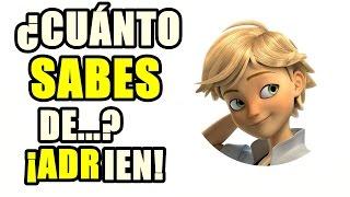 Download ¿Cuánto sabes de Adrien? - Ladybug: TEST ¡ADELANTE! Video