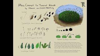 Download Moss Clumps Concept Art Creation Video