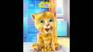 Download Mariyanin kedisi Video
