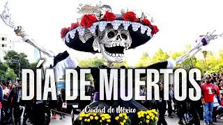 Download Desfile de Dia de Muertos 2016 Video