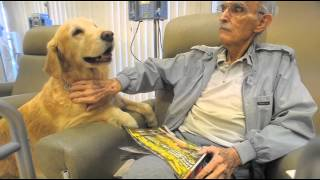 Download Therapy dog Skarlet comforts Fresno cancer patients Video