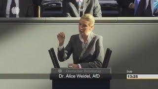 Download SCHARFE KRITIK: Alice Weidel fordert Rechte von der EU zurück Video