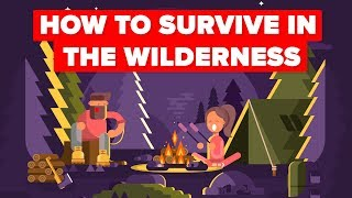 Download What You Should Do To Survive In The Wilderness Video