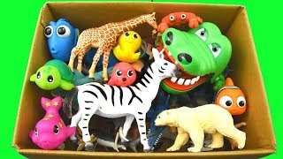 Download Learn Colors With Wild Animals in a Box and Shark Toys For Kids Video