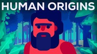 Download What Happened Before History? Human Origins Video