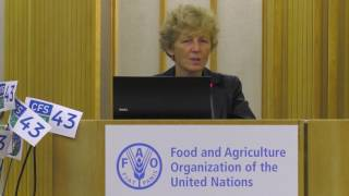 Download Increase food security and nutrition without clearing forests? Yes, we can Video