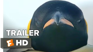 Download March of the Penguins 2: The Next Step Trailer #1 (2018) | Movieclips Coming Soon Video
