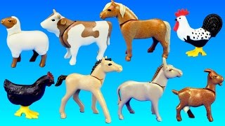 Download PLAYMOBIL Country Farm Animals Pen and Hen House Building Set Build Review Video