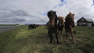 Download Iceland: A Virtual Journey in 360 Video
