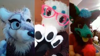 Download Cringe Furry TikTok Videos Video