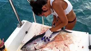 Download Ep.167 Preparing Tuna Video