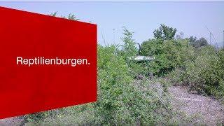 Download Was der neue Gateway Basel Nord mit «Reptilienburgen» auf sich hat. Video