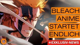 Download SAO & One Piece im Anime-Kino│Bleach in Deutschland│Summer Season 2017 - Ninotaku Anime News #119 Video