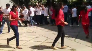 Download Flash mob at IISc Bangalore - Valentine's day 2016 (1/2) Video