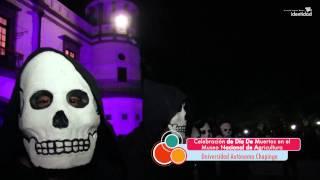 Download Día de Muertos en Chapingo Video