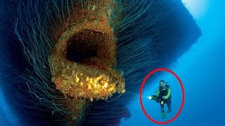 Download 15 Most Shocking Underwater Discoveries Caught On Camera Video
