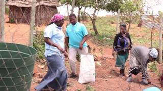Download Swaziland: Responding to the drought Video