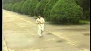 Download Emei Pai - Seng Men [峨眉派-僧门] Video