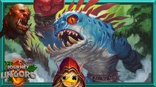Download Turn 5 Megafin!? New Murloc Shaman is OP. Video