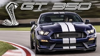 Download 2019 Shelby GT350 - EVERYTHING You Need to Know! Video